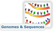 Genomes and Sequences